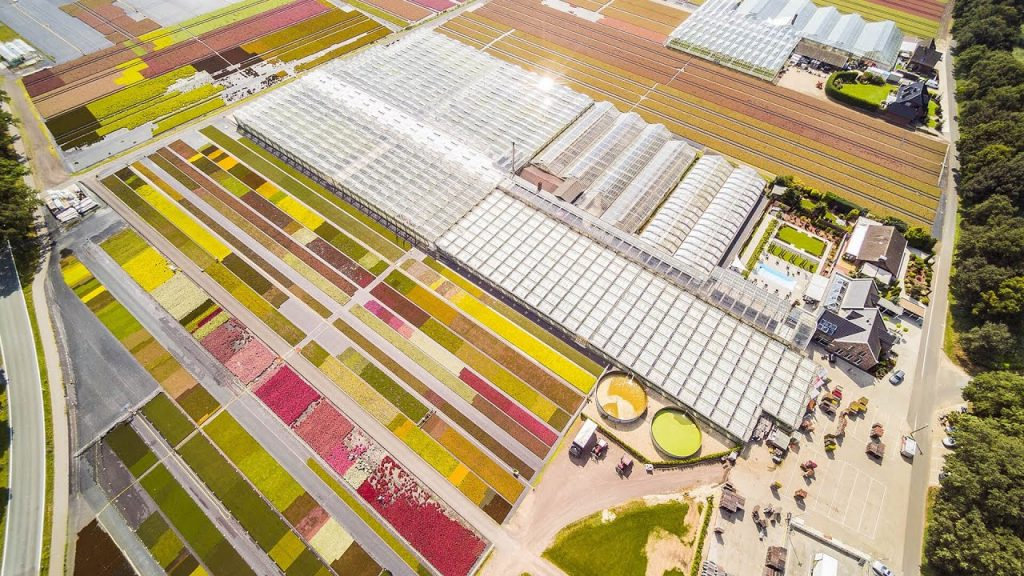 Gartenbau Janßen Drohnenbild